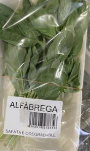 Alfàbrega