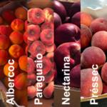 Variat de fruita